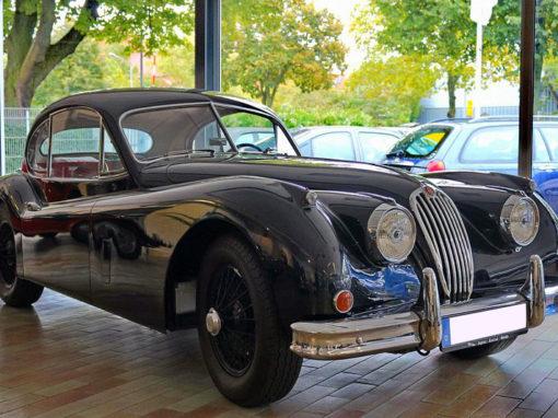 Jaguar Galerie